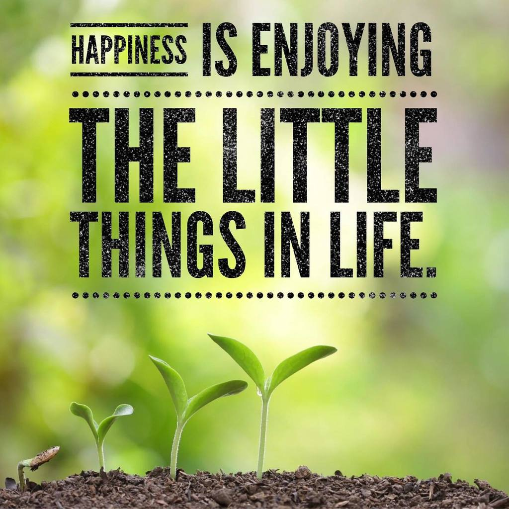 """Happiness is enjoying the little things in life"" poster"